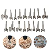 Woodworking Forstner Drill Bits Sets, HEHEINC 17 PCS Carbon High Speed Steel Wood Working Hole...